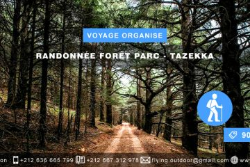 VOYAGE ORGANISE – Randonnée Forêt > TAZEKKA VOYAGE ORGANISE RANDONN  E FOR  T PARC TAZEKKA 360x240  FORMULAIRE D'INSCRIPTION-VOYAGE ORGANISE-PARAPENTE-VOL-LIBRE-RABAT VOYAGE ORGANISE RANDONN C3 89E FOR C3 8AT PARC TAZEKKA 360x240